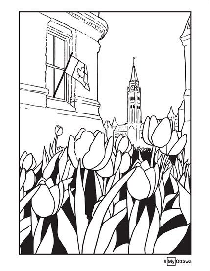 Colouring page - Tulips - Option 1