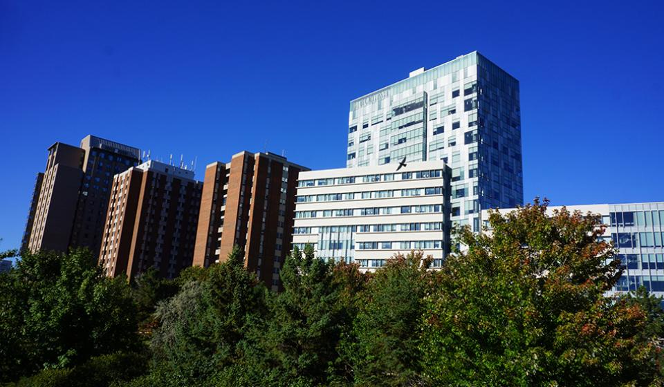 University of Ottawa: Residences / Conventions and Reservations