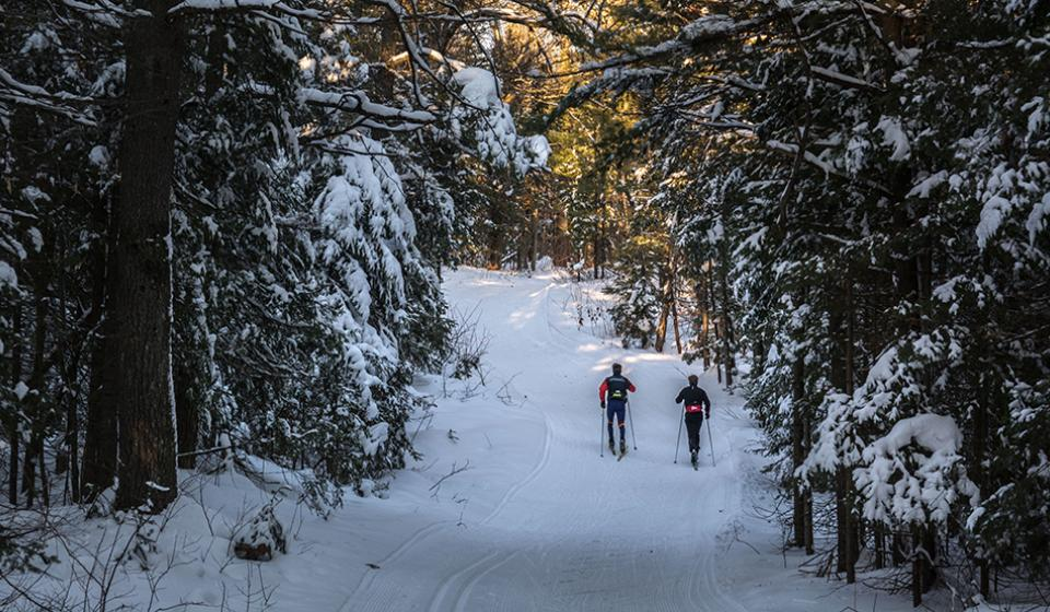 Gatineau Park, Winter, Cross-country skiing
