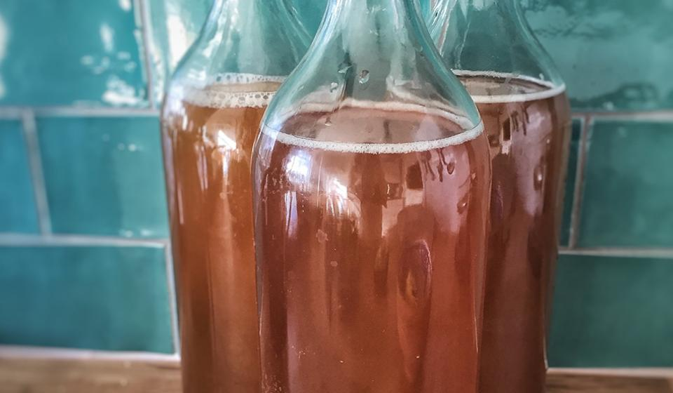 Kombucha - Food